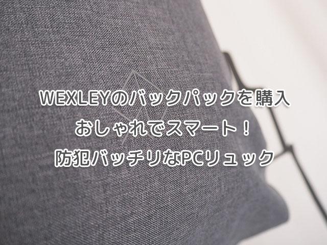Wexleyのバックパックを購入【おしゃれでスマート!防犯バッチリなPCリュック】